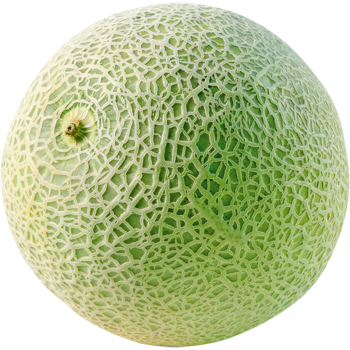 Italien - Cantaloupemelone
