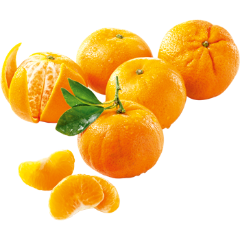 Spanien - EDEKA - Clementinen