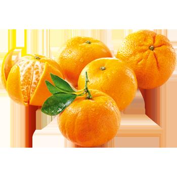 Spanien - EDEKA Selection - Clementinen
