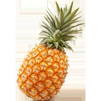 Costa Rica - Ananas