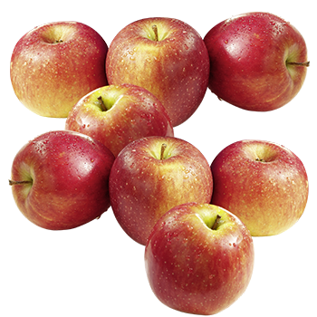 Neuseeland - Bio-Tafeläpfel