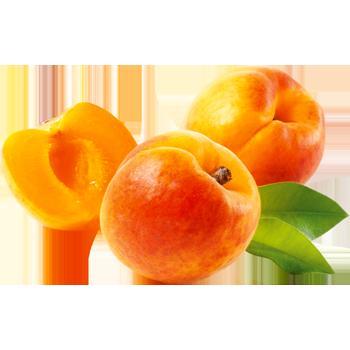 Spanien - Aprikosen