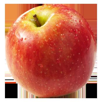 Neuseeland - Tafeläpfel
