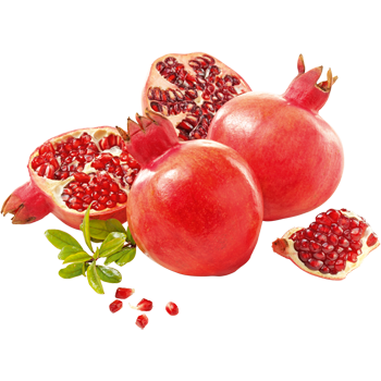 Peru - Granatäpfel