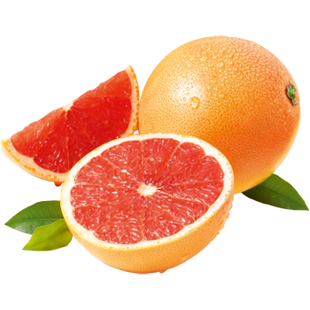 Südafrika - Outspan - Grapefruit