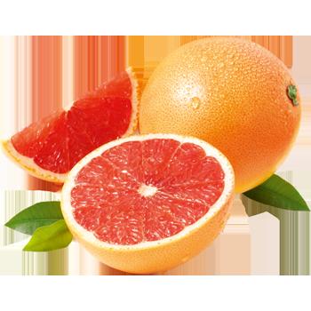 Südafrika - Outspan - Grapefruit