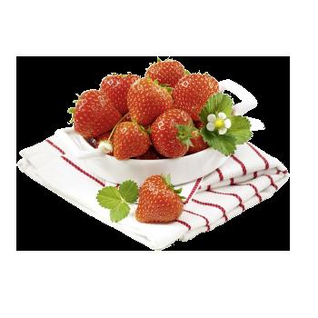 Spanien - Erdbeeren