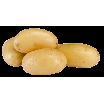 Frankreich - Speisekartoffeln