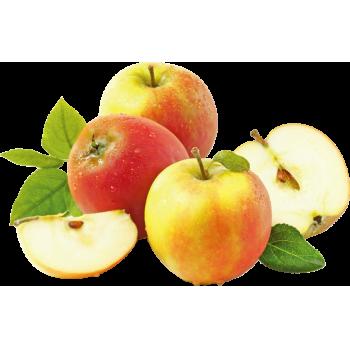 Deutschland - meinLand - Tafeläpfel