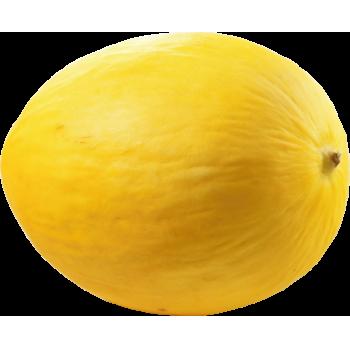 Spanien - Honig-, Galia- oder Piel-de-Sapo-Melonen oder Italien - Cantaloupe-Melonen