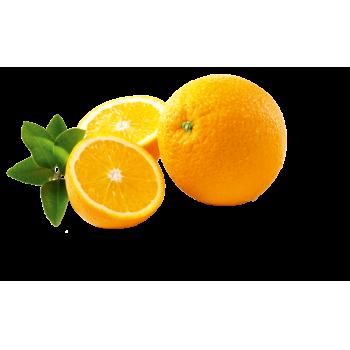 Spanien - Orangen