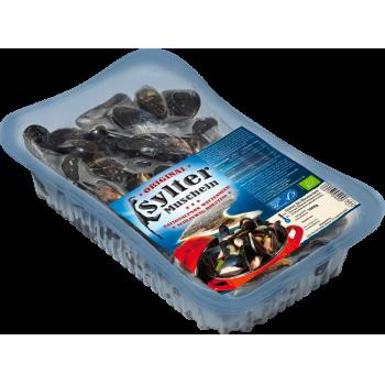 MSC - Bio Sylter Muscheln