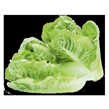 meinLand. EDEKA - Land-Kopfsalat-Herzen