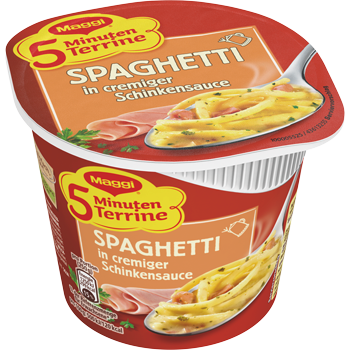 Maggi 5 Minuten Terrine oder Magic Asia Noodle Cup