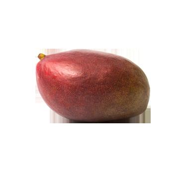 Spanien - Mango