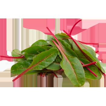 Italien - Bio-Salate