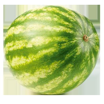 Spanien - Wassermelonen