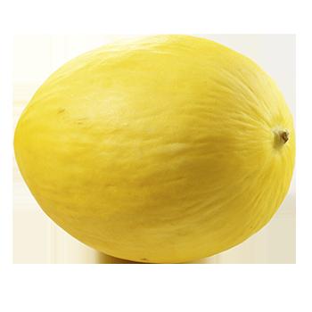 Spanien - Honig-, Galia-, Cantaloupe- oder Piel-de-Sapo-Melonen