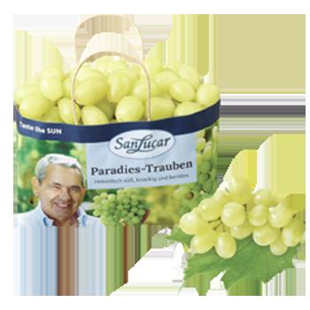 Italien - Tafeltrauben