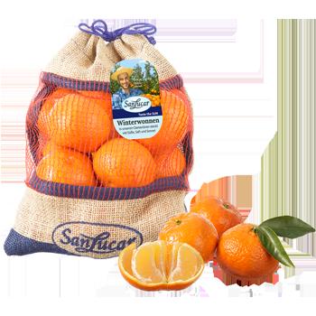 Spanien - SanLucar - Clementinen oder Orangen