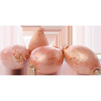 Niederlande - Demeter - Schalotten