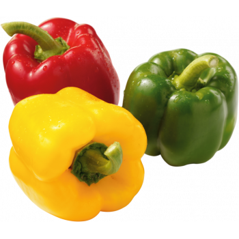 Spanien - Paprika-Mix