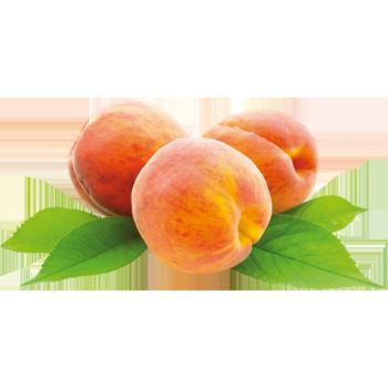 Südafrika - Pfirsiche