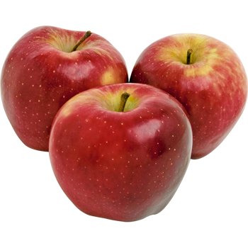 Frankreich - Nikolaus-Tafeläpfel