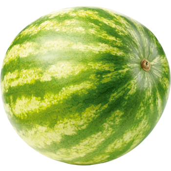 Italien - Mini-Wassermelone