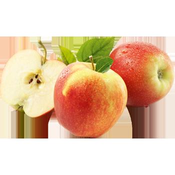 Deutschland - Gut & Günstig - Tafeläpfel