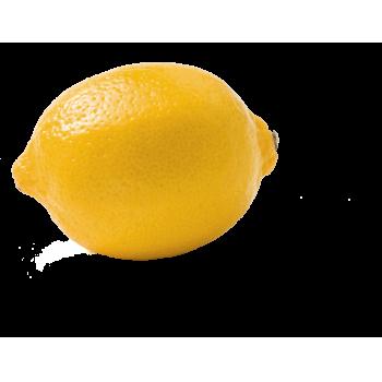 Italien - Bio-Zitronen