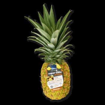 GUT & GÜNSTIG - Ananas Scheiben oder Stücke