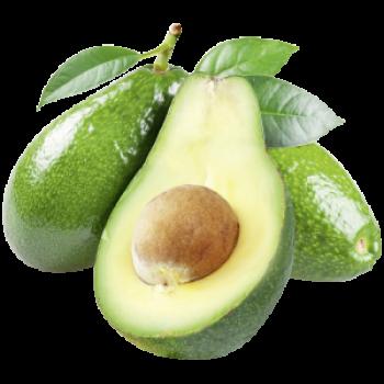 Südafrika - Avocado