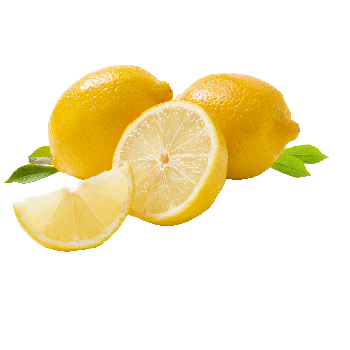 Spanien - Demeter - Bio-Zitronen